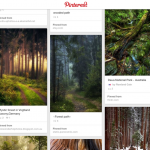 Great Pinterest Boards: Visit the heart of the forest